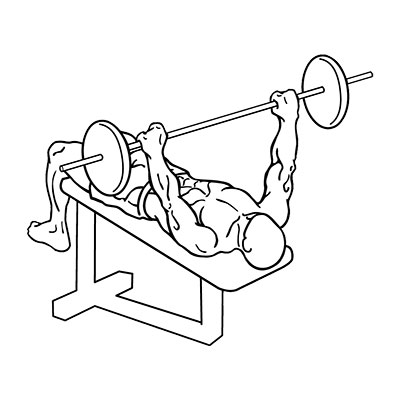 What muscles do decline bench press work?